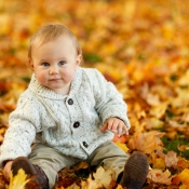 autumn-275920